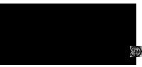 Logo Japan Week Torino